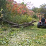 Skidding logs with a Kubota B1750