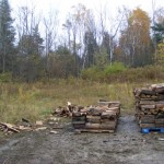 Stacking wood in progress
