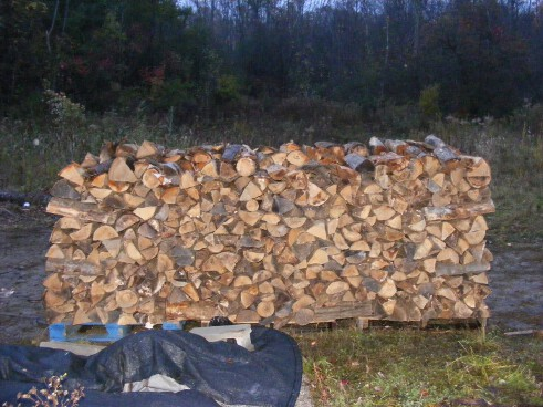 Side view of a wood pile